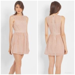 [Maje] 'Cloche' Lace Cocktail Fit & Flare Dress
